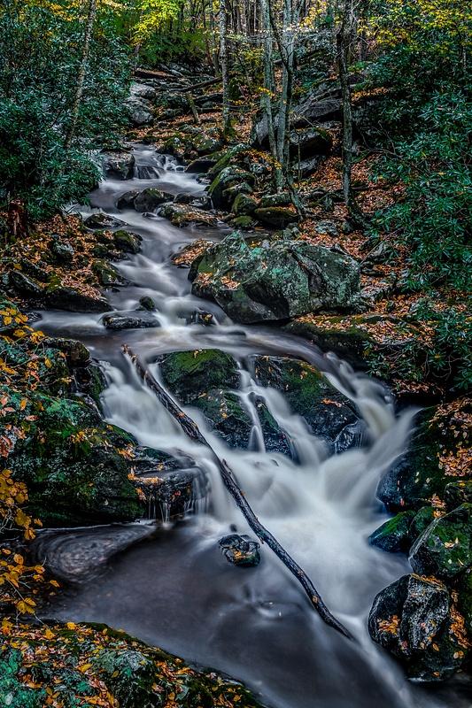 Falls on Tremount Trail