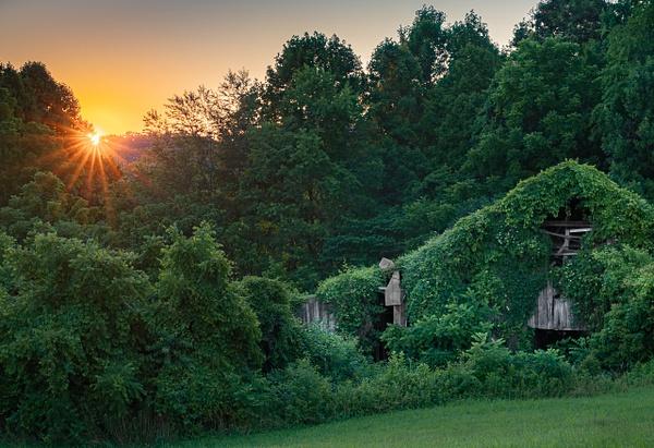 Ivy Barn - Sun Rise/Set - Allan Barnett Photography