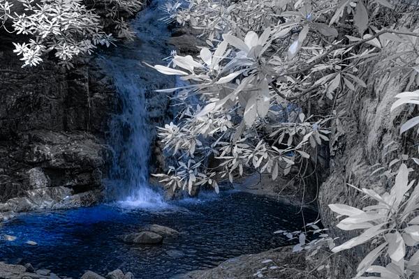 IR Water by Allan Barnett