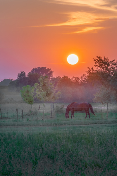 Lazy Evening Sunset by Allan Barnett