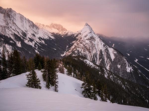 Golden Winter Sunrise, Kananaskis, Alberta, Canada by...