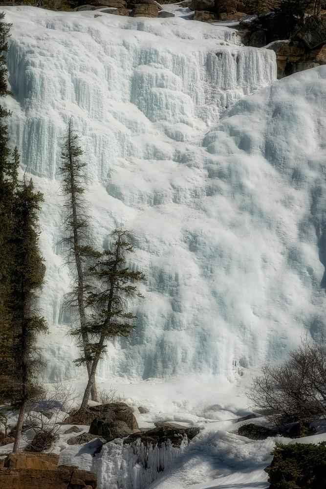 Tangle Falls, Jasper National Park Alberta Canada