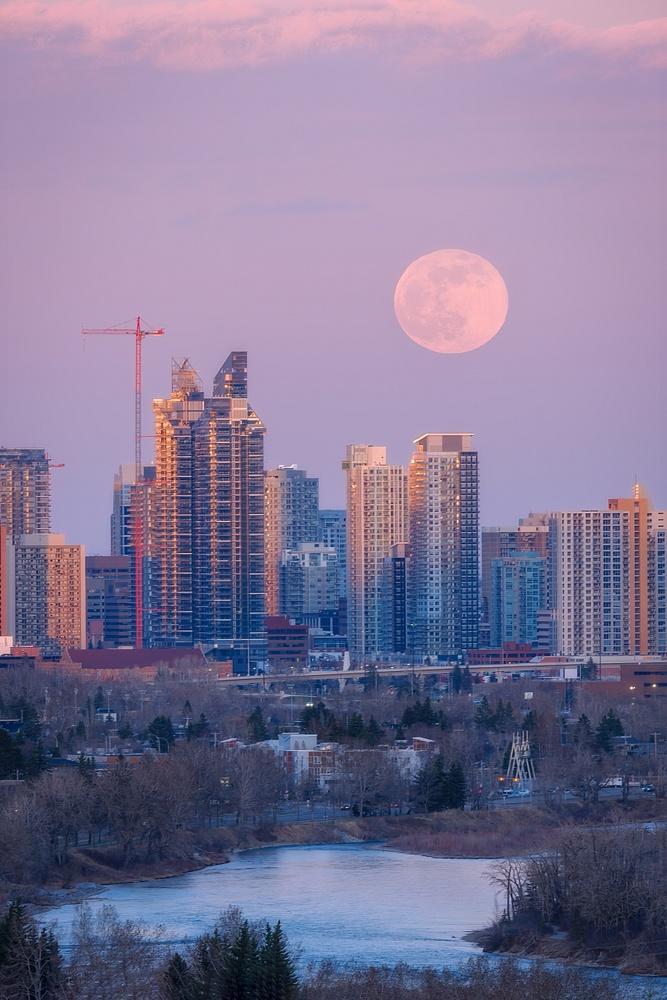 Pink Moon Over Calgary, Alberta