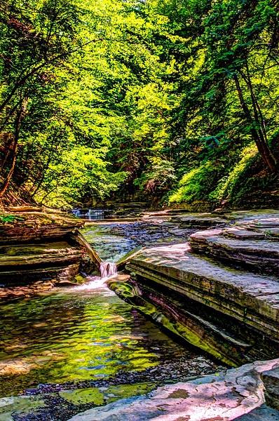 Stoney Brook Park - Additional Information - Bella Mondo Images