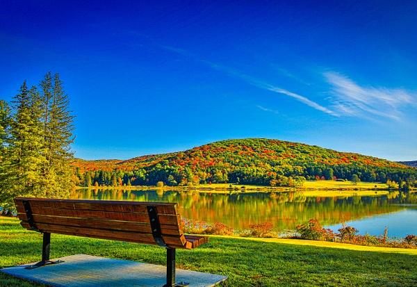 2020 Fall Foliage (US17008) - Purchase Prints - Bella Mondo Images