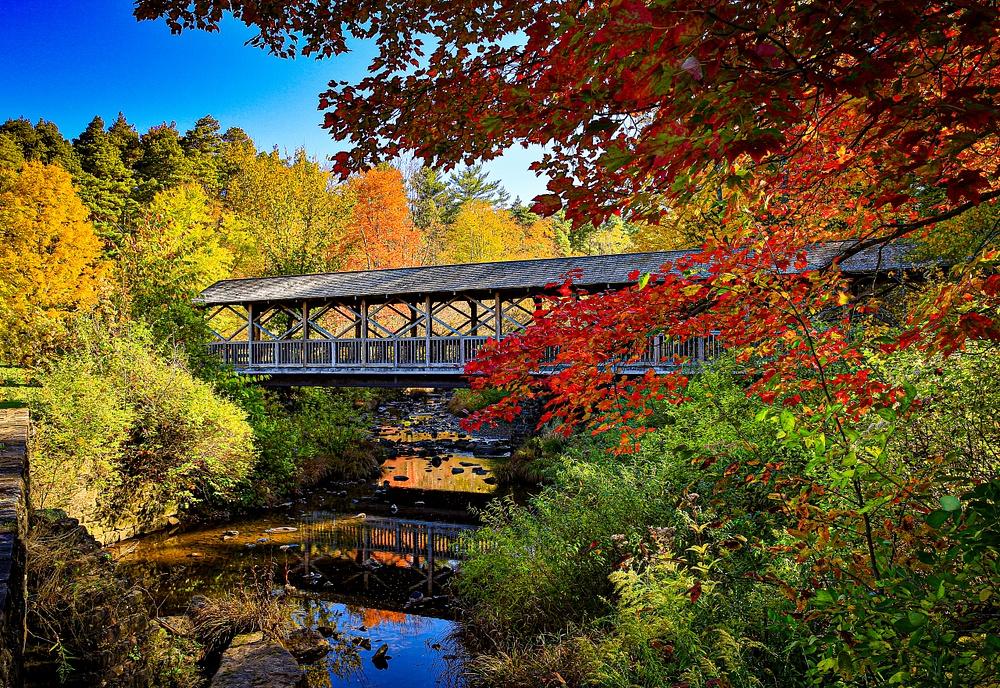 2020 Fall Foliage (US1705)