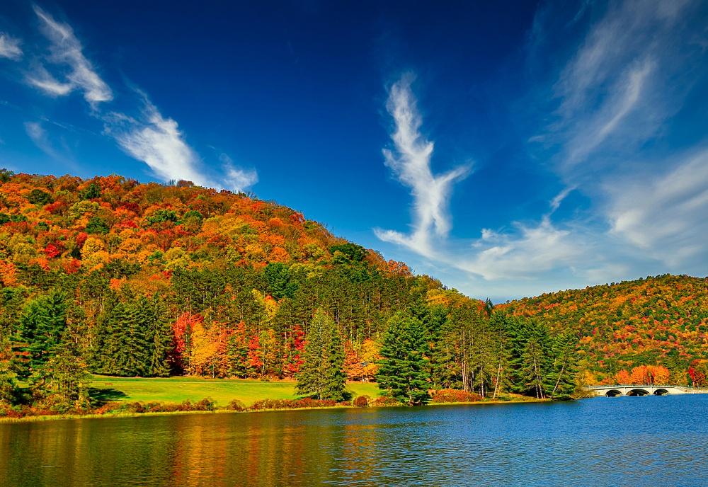 2020 Fall Foliage (US1704)