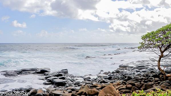 Sea Rocks - Home - Rick Stoeckel