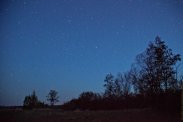 Polisto stars by ctpe71ok by ctpe71ok