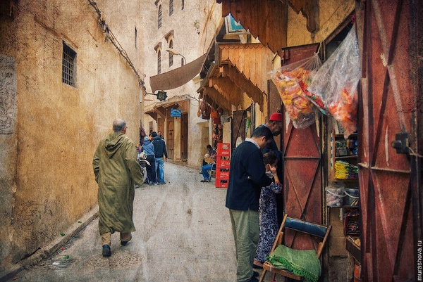 2010-11-Maroc-0003-res