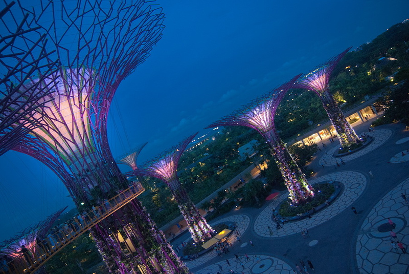 supertrees_0027_res