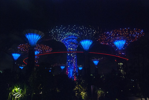 Singapore Supertrees by MariaMurashova