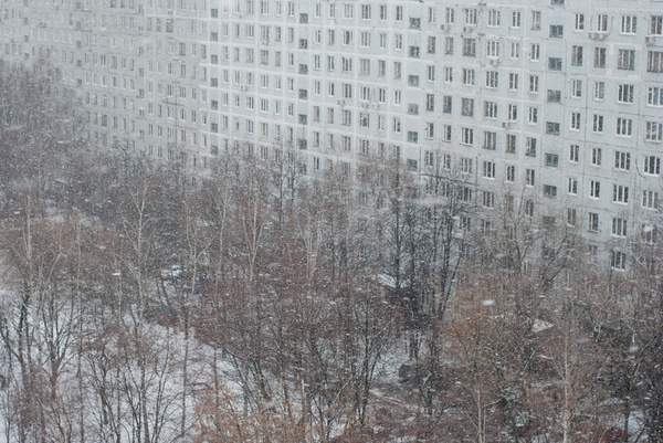 winter_0001_res by MariaMurashova