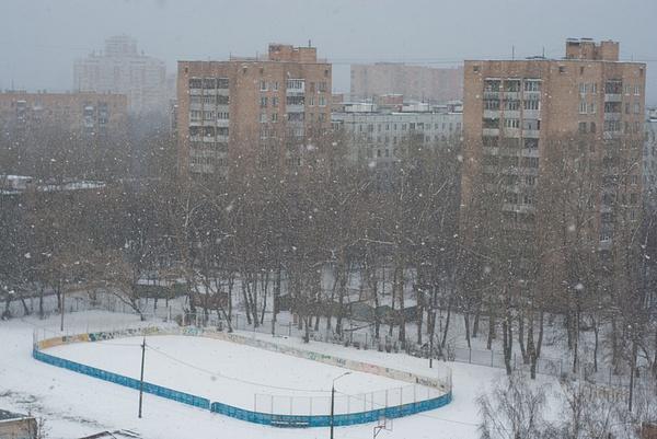 winter_0003_res by MariaMurashova