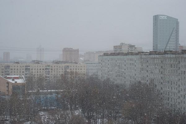 winter_0004_res by MariaMurashova