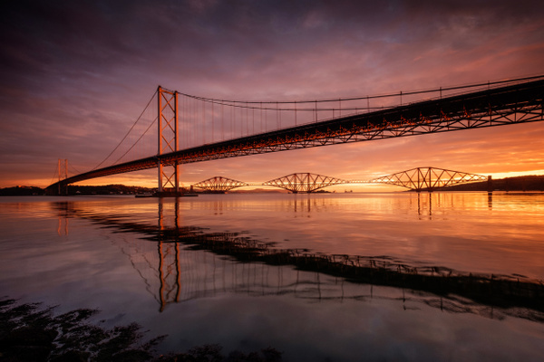 Forth Bridges, Port Edgar - Forth Bridges
