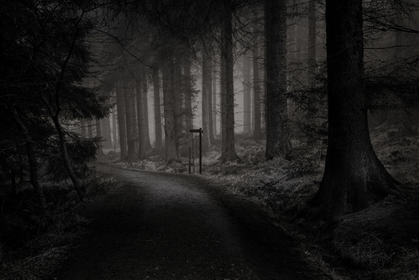 Beecraigs Country Park - Monochrome photography