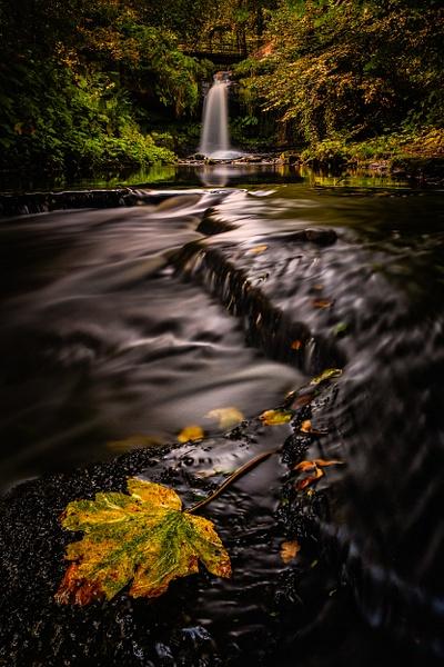 Westquarter Glen - Scottish Landscape Photography