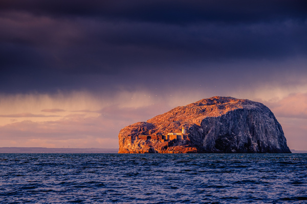 Bass Rock - Sea & Coastline - David Queenan Photography
