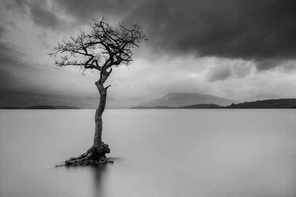 Milarrochy Bay,  Loch Lomond - Monochrome photography
