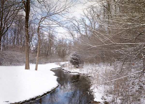 210201_My favorite little creek after light snow - Waterfalls - Mark Edwards Photography