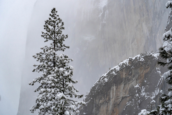 _EME9770 - Snow and Ice - ErikEilers