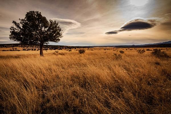 Capitan - New Mexico