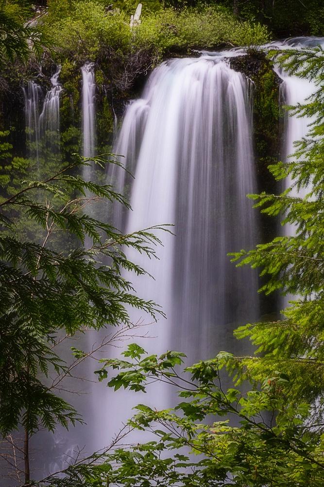Koosah Falls - Oregon