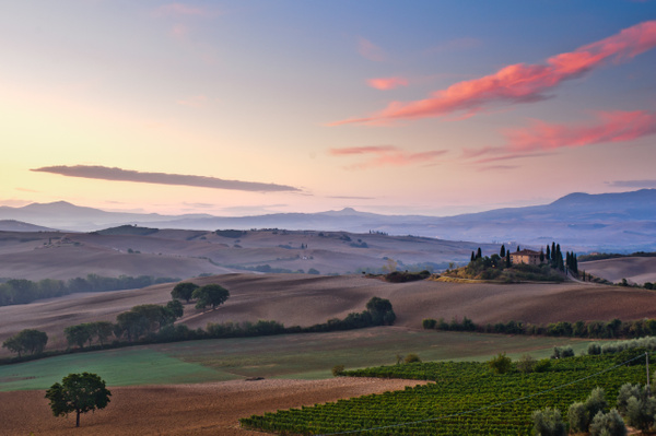 Val d'Orcia, Italy - Landscape -  Marcs Photo