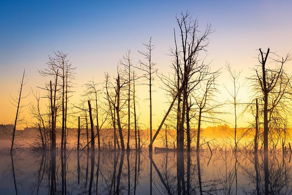Twin Lakes-7481
