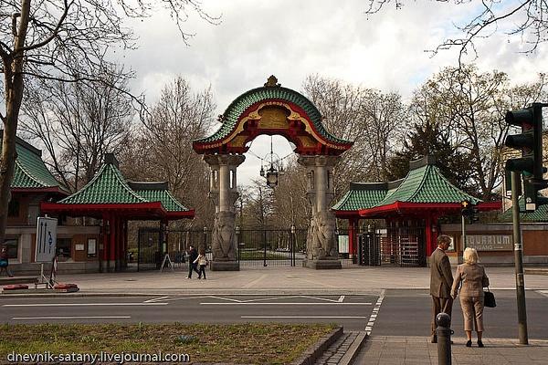 Berlin: Zoo by Sergey Kokovenko