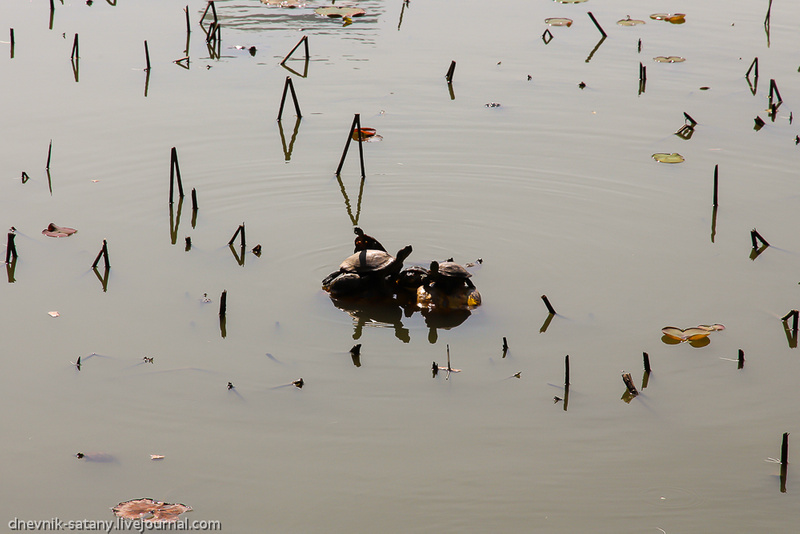 20121228_china_333