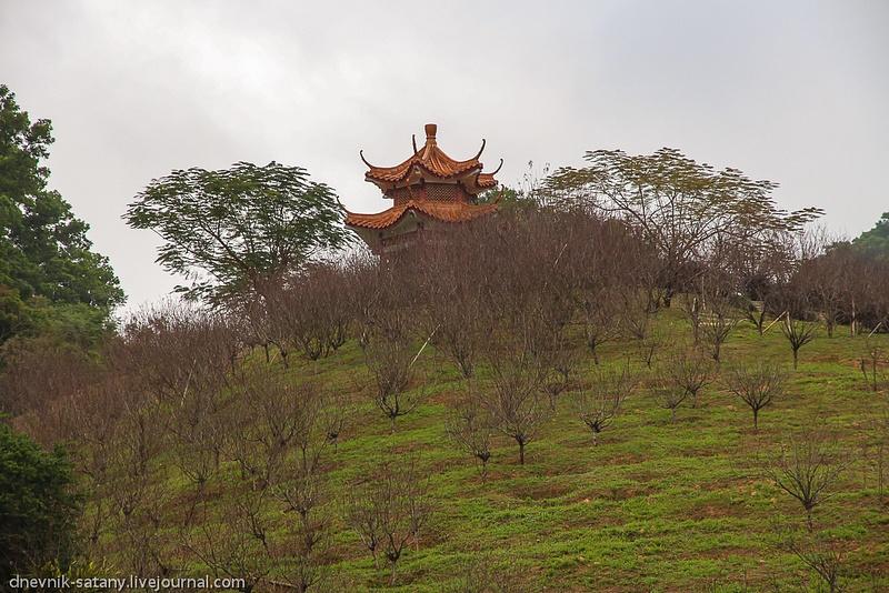 20121229_china_533