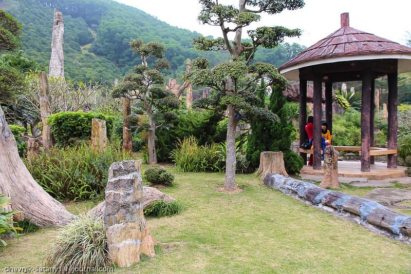 20121229_china_542
