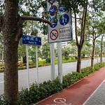 Shenzhen: Transport