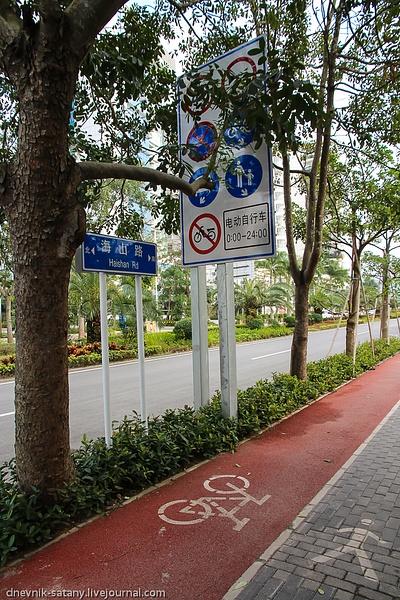 Shenzhen: Transport by Sergey Kokovenko