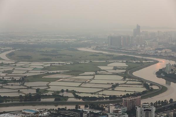 Shenzhen: from height by Sergey Kokovenko