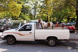 Greece: Edessa