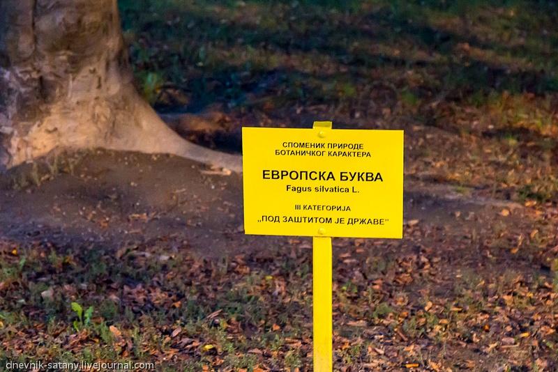 20131004_Serbia_028