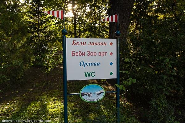 20131006_Serbia_319 by Sergey Kokovenko