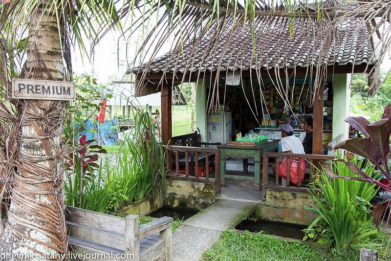 20131227_Bali_005