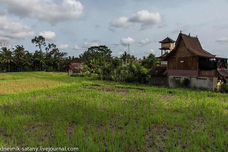 20131227_Bali_006