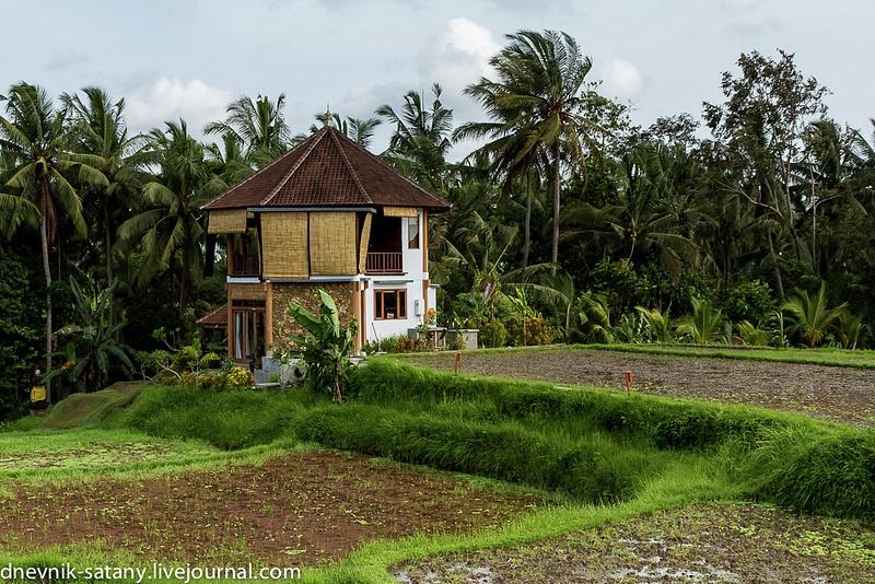 20131227_Bali_008