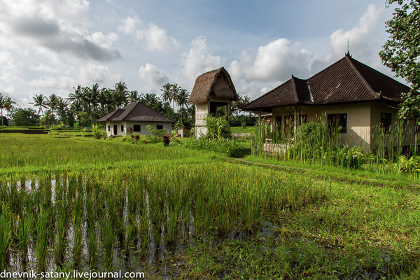 20131227_Bali_009 by Sergey Kokovenko