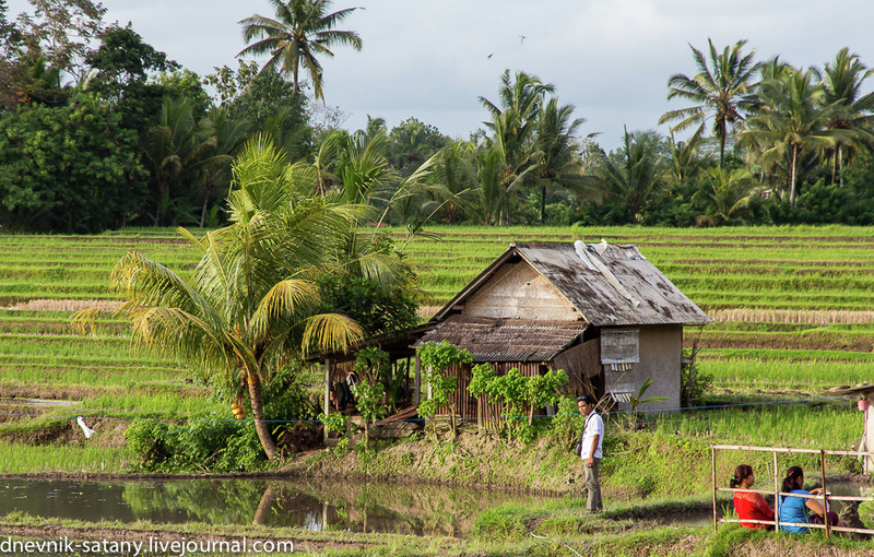 20131227_Bali_018