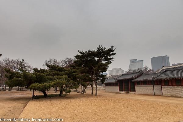 20140108_Seoul_050 by Sergey Kokovenko