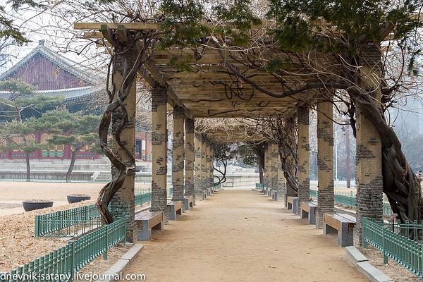 20140108_Seoul_058 by Sergey Kokovenko