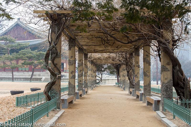 20140108_Seoul_058