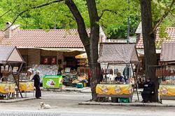 Georgia: Telavi