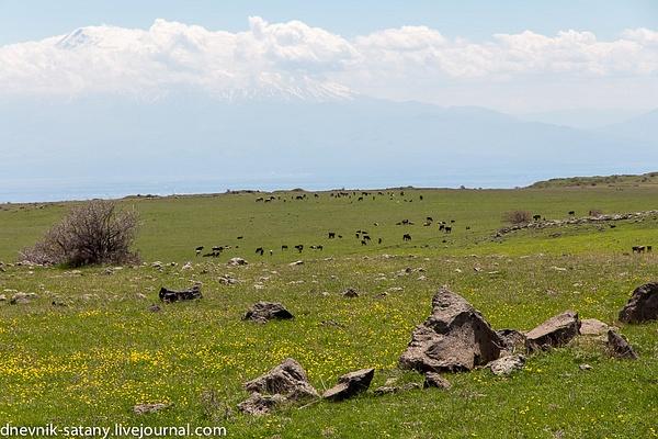 20140504_Armenia_269 by Sergey Kokovenko